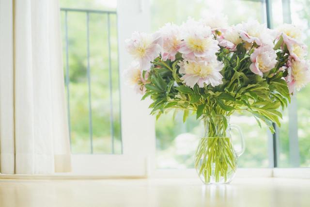 Jak dekorować parapet, aby wyglądał pięknie?